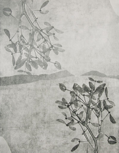Elisabetta Diamanti-Capovolgimento-incisione 50x70-2013