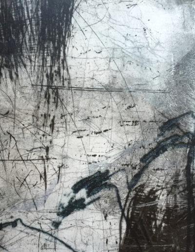 Elisabetta Diamanti-Philodendron-Presenza-incisione 35x50-2013