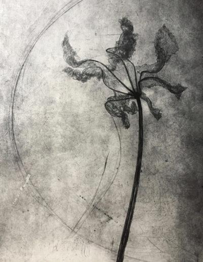 Elisabetta Diamanti-Presenza-incisione 50x70-2017