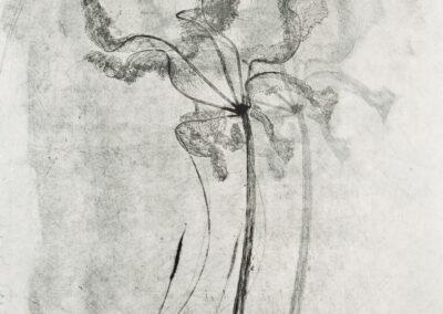 Elisabetta Diamanti, Capovolgimento, Doppia presenza, incisione calcografica, 2013.