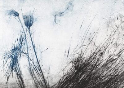 Elisabetta Diamanti, Re-Signum, Animus Re-Signum, incisione calcografica, 2017.